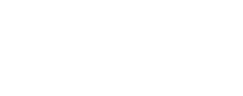 The Computer Firm