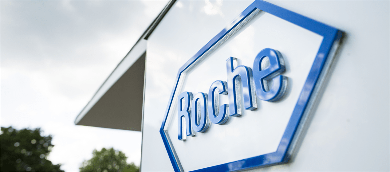 Development of HR software for the pharmaceutical company Roche (CH)